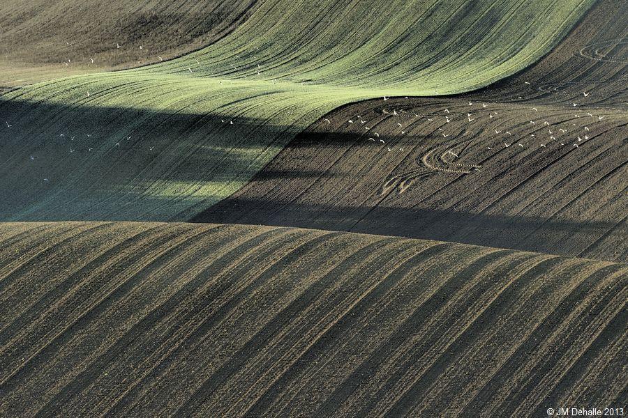 Land Art #02