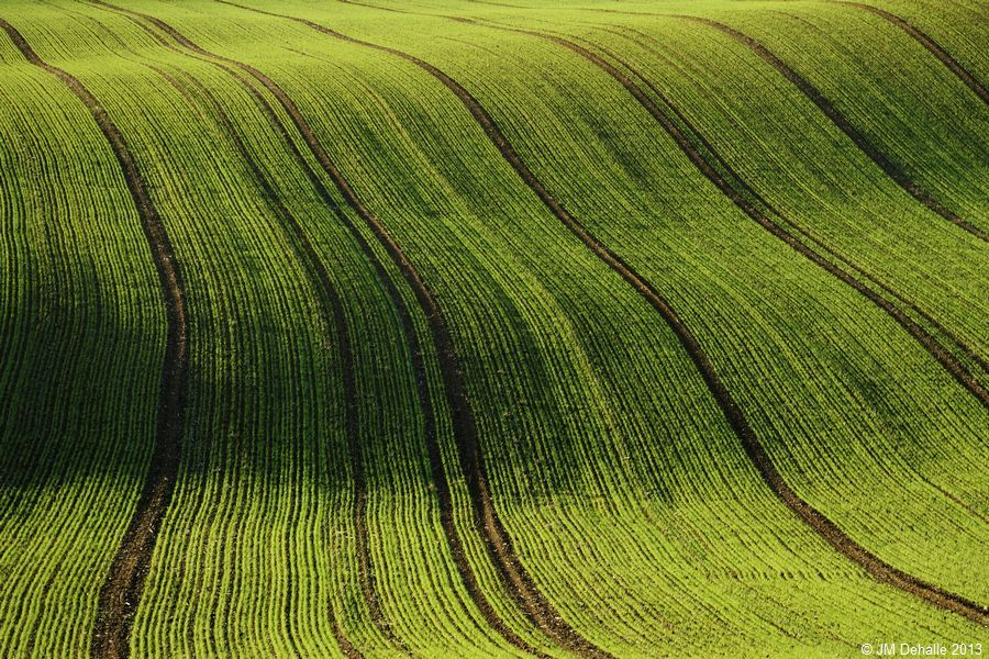 Land Art #10