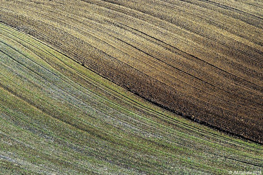 Land Art #11