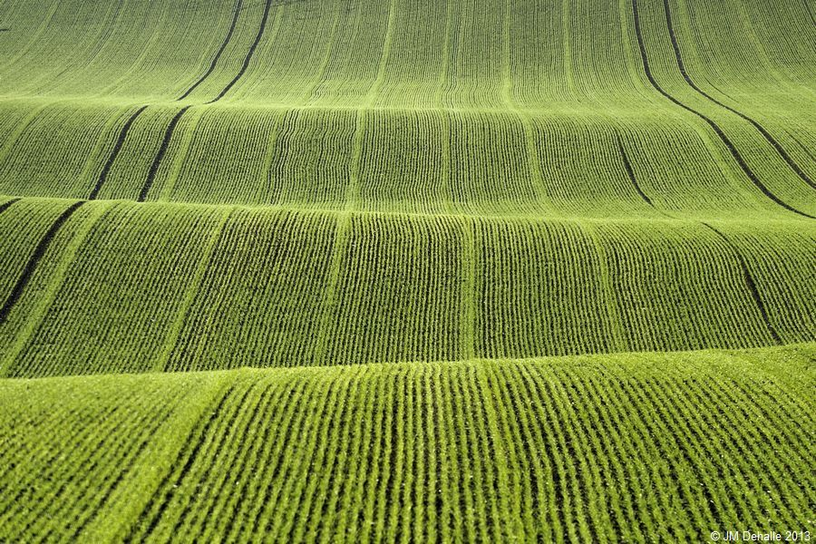 Land Art #12