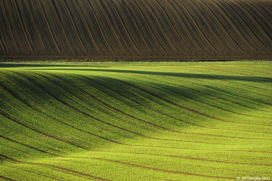 Land Art #16
